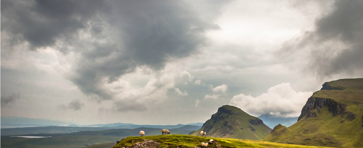 best guided tours of scotland