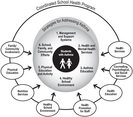 physical education guide to implementation